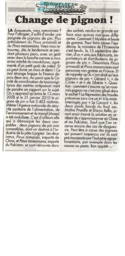 CHANGE DE PIGNON